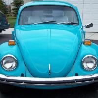 bug120